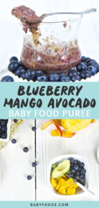Graphic for Post - Blueberry, Mango and Avocado Baby Food Puree, Image is of a clear cup with the chunky puree inside, with a spoon resting on top of the lid as well as an image of a spread of produce on a white background.