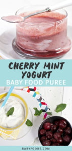 Graphic for Post - Cherry Mint Yogurt Baby Food Puree with an image of a clear jar filled with a cherry puree and yogurt as well as am image of a spread of produce on a white board.