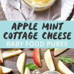 Graphic for post- apple mint cottage cheese baby food puree. Clear bowl filled with apple puree and cottage cheese and another image of a spread on a wooden board of apples and a bowl of cottage cheese.