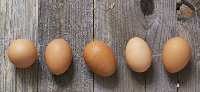 5 brown eggs lined up on a wooden surface.