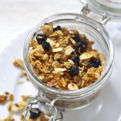 blueberry and coconut granola for toddler and kids