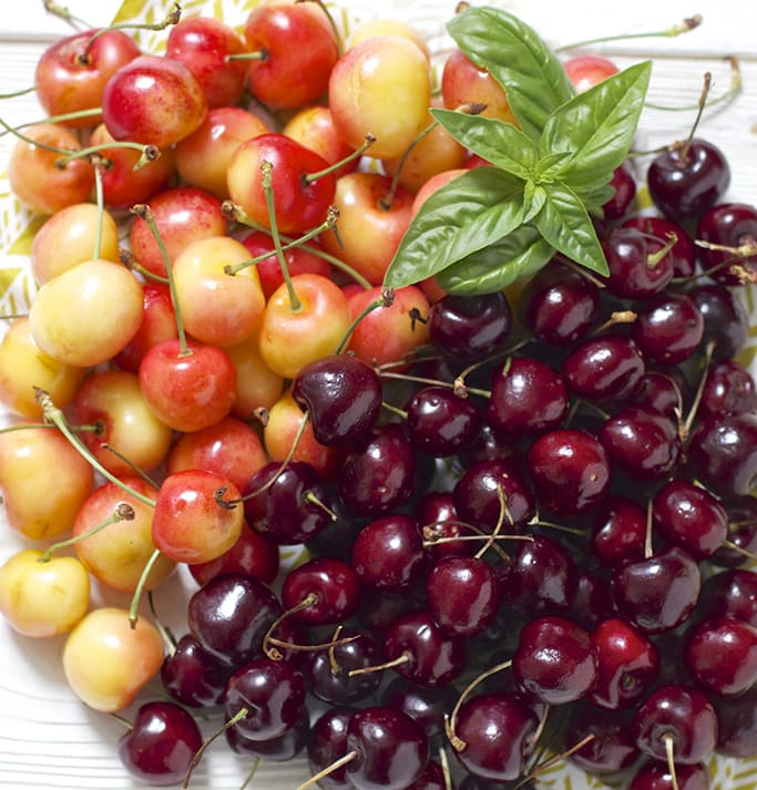A bunch of cherries - red and sweet - in a big pile with a basil leaf sitting on top.