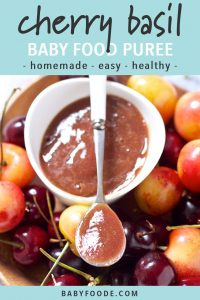 graphic for post - text reads - cherry basil baby food puree - homemade - easy - healthy. Image is of a small white bowl of cherry puree surrounded by whole fresh cherries.