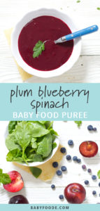 Graphic for post - Plum Blueberry Spinach Baby Food Puree. Images are of a white bowl filled with homemade baby food, the other image is of a scatter of produce on a white wooden board.