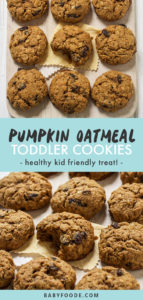 Pinterest image for toddler and kid friendly pumpkin oatmeal cookies.