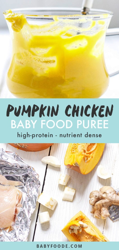 Graphic for Post - Pumpkin Chicken Baby Food Puree - high-protein- nutrient dense. Images are of a close up of a clear bowl filled with creamy homemade puree and the other is a spread of produce on a white background.