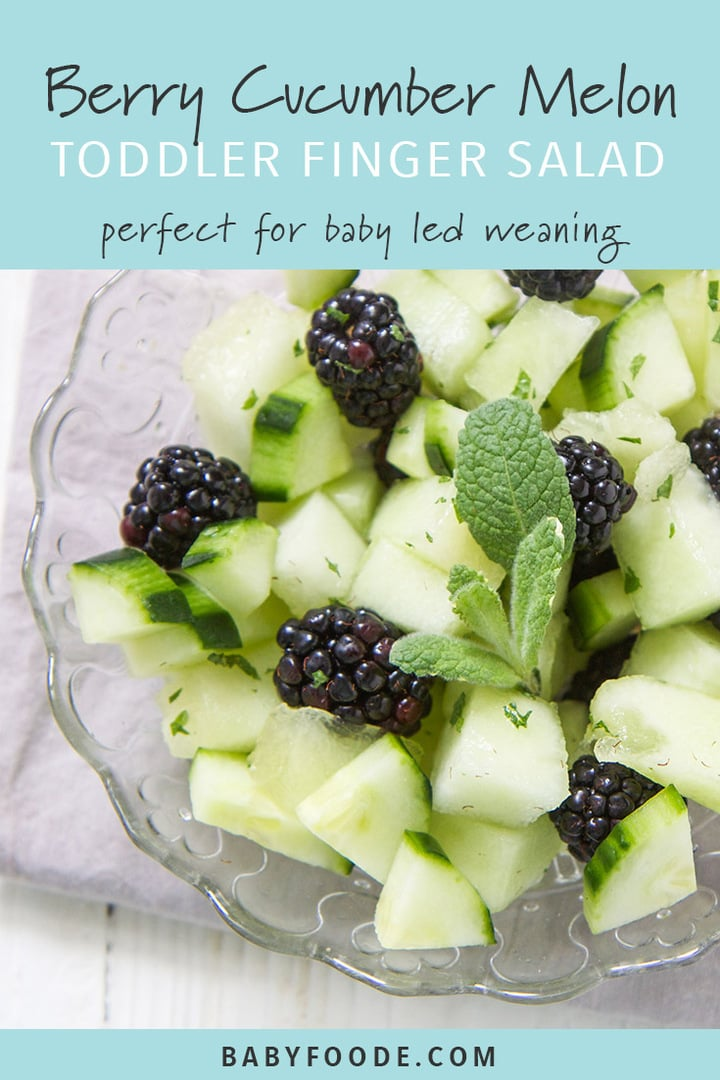 A bowl of blackberry and cucumber finger salad for baby led weaning, toddlers, and kids.
