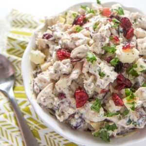 A bowl of healthy chicken salad with apples and cranberries for kids and toddlers.