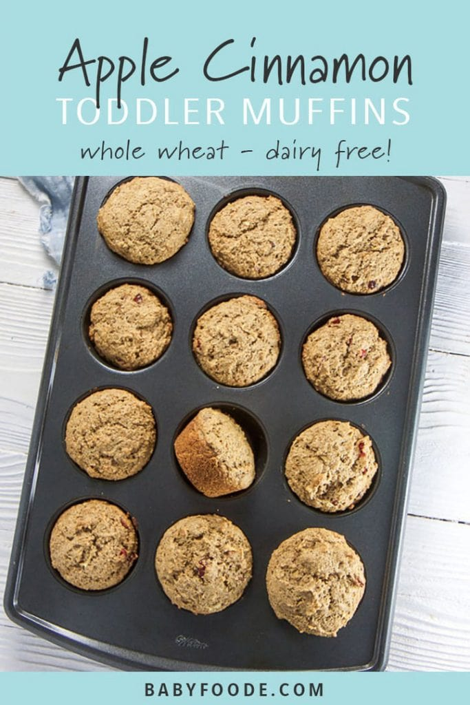 Graphic for post - apple cinnamon toddler muffins - whole wheat - dairy free! - with muffins in a muffin tin.