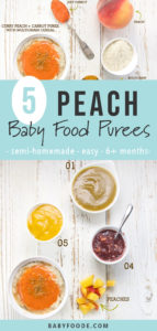 Graphic for post - 5 Peach Baby Food Purees - semi-homemade, easy. 6+ months. Images are of a spread of white bowls filled with peach baby food purees and fresh and store-bought produce.