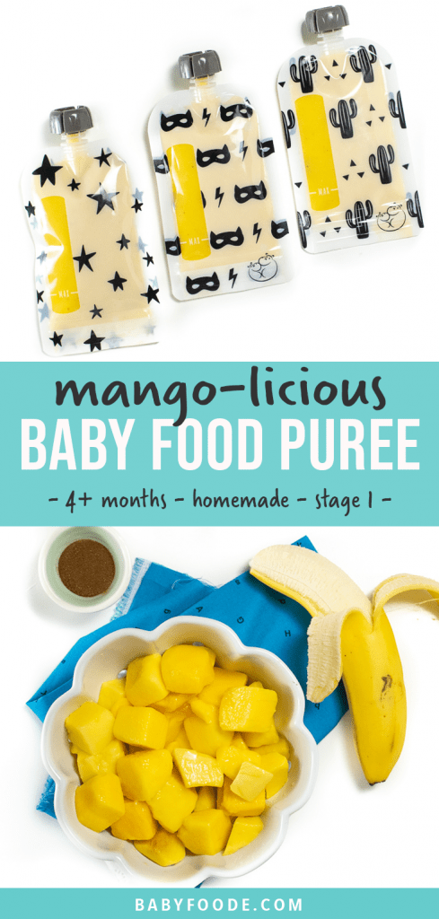 Graphic for Post - Mango Baby Food Puree - 4 months and up - homemade - stage one puree. WIth image of a bowl of mango puree with chunks of produce surrounding it.