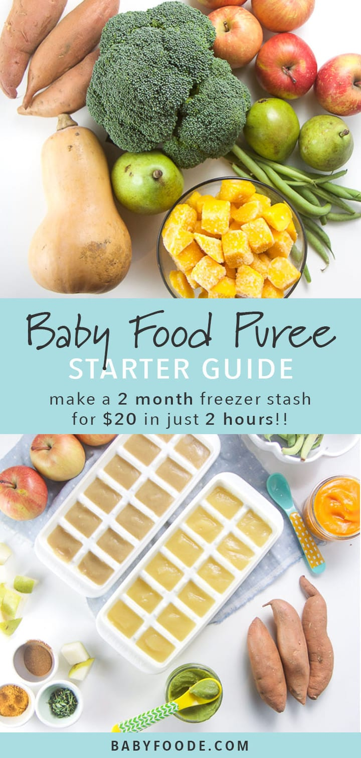 Graphic for post - text reads - Baby Food Puree Starter Guide - make a 2 month freezer stash for $20 in just 2 hours!! Top images is of all the produce used to make these 7 organic baby food recipes grouped together. Bottom image is of some produce scattered around the made purees.