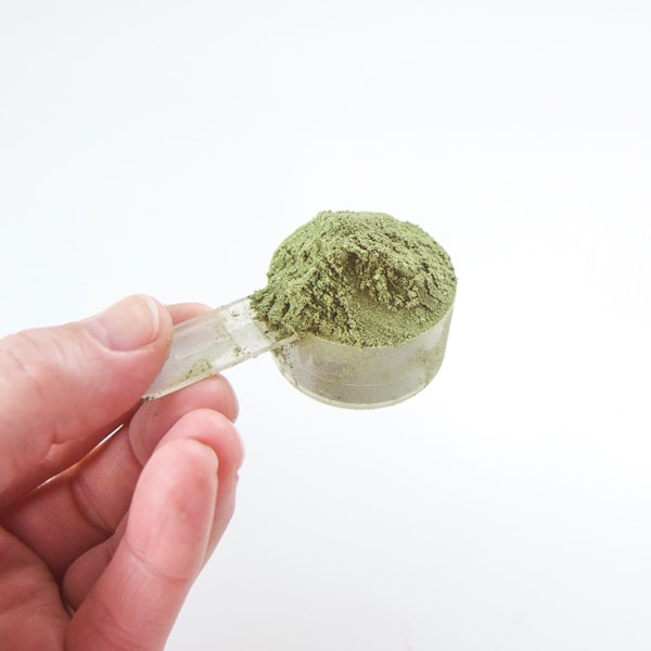 A scoop of plant based protein powder for adding to kid friendly vegan smoothies.