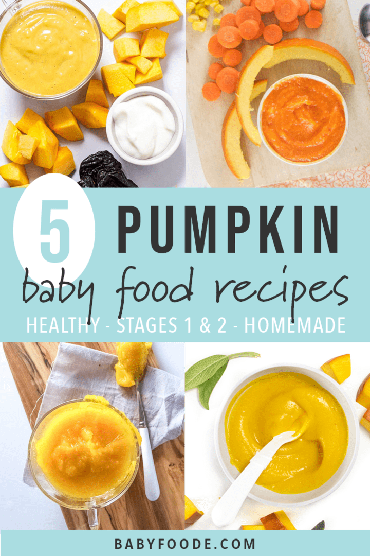 Graphic for Post - 5 pumpkin puree recipes for baby - homemade, stages 1 and 2, healthy. grid of photos all with images of different pumpkin puree recipes for baby.