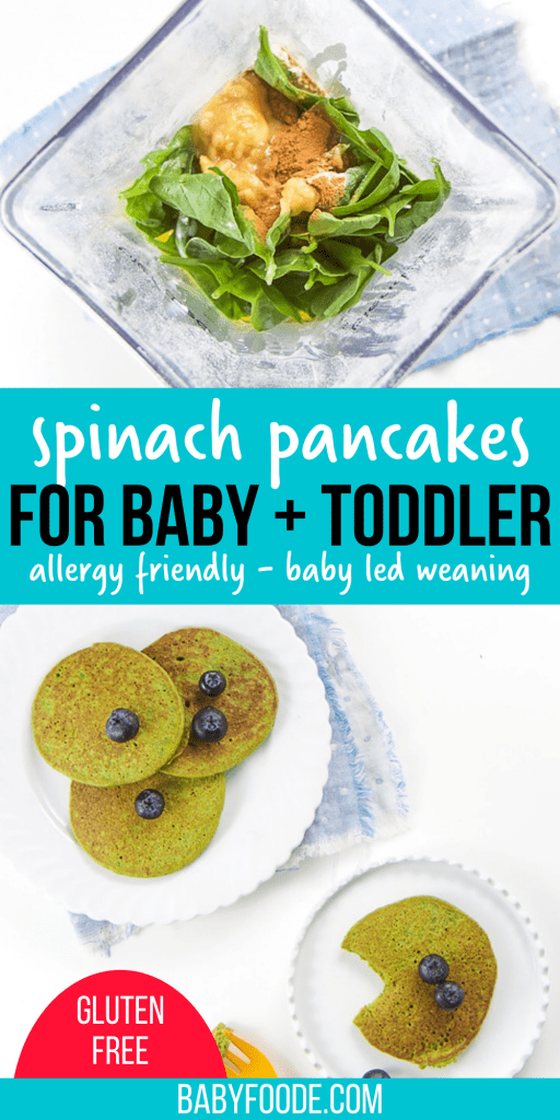 Easy Blender Spinach Pancakes for Baby + Toddler - Baby Foode