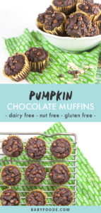 Pinterest image for allergy friendly pumpkin chocolate muffins.
