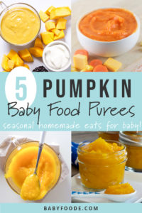 Graphic for post - 5 pumpkin baby food purees with a grid of images of bowls full of baby purees.