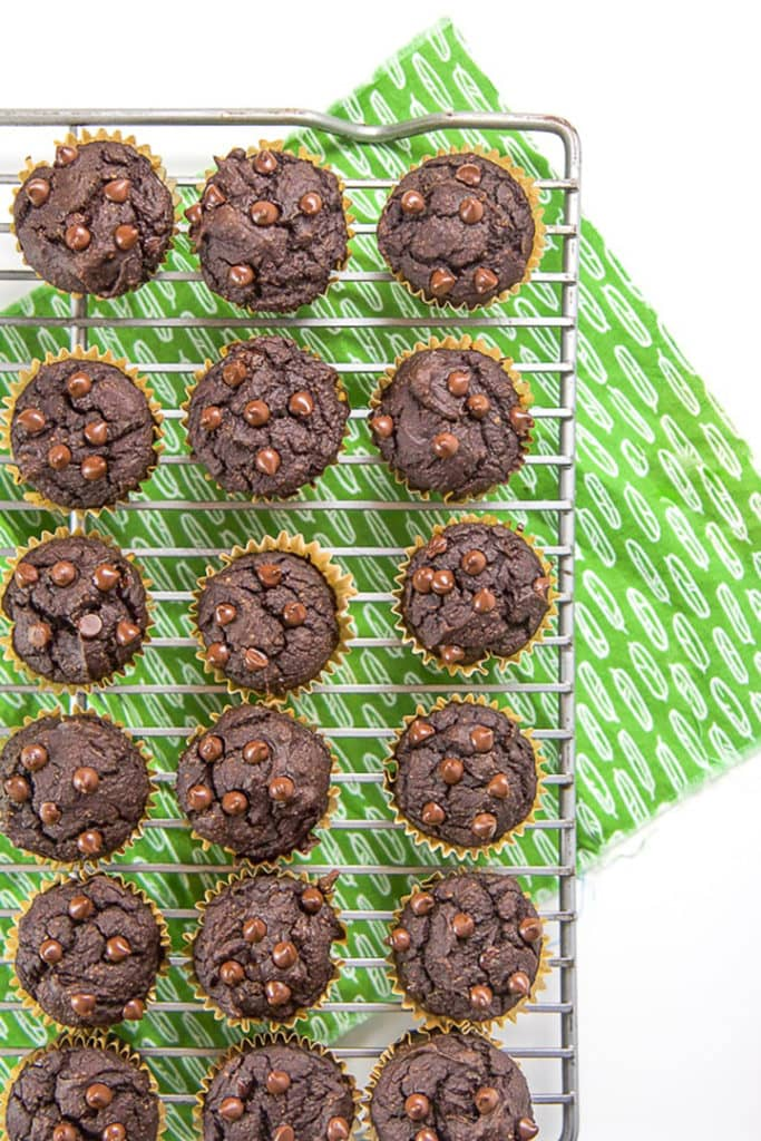 Cooling rack with chocolate chip muffins for toddler and kids
