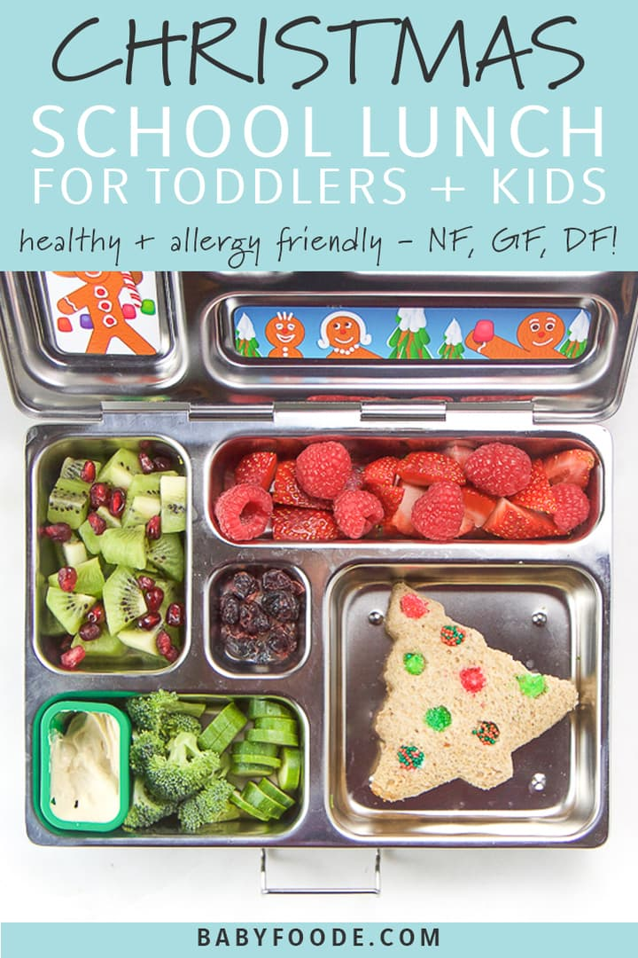 graphic for post - text reads - christmas school lunch for toddlers and kids, healthy and allergy friendly - NF, GF, DF. Image is of a silver lunch box filled with holiday themed foods.