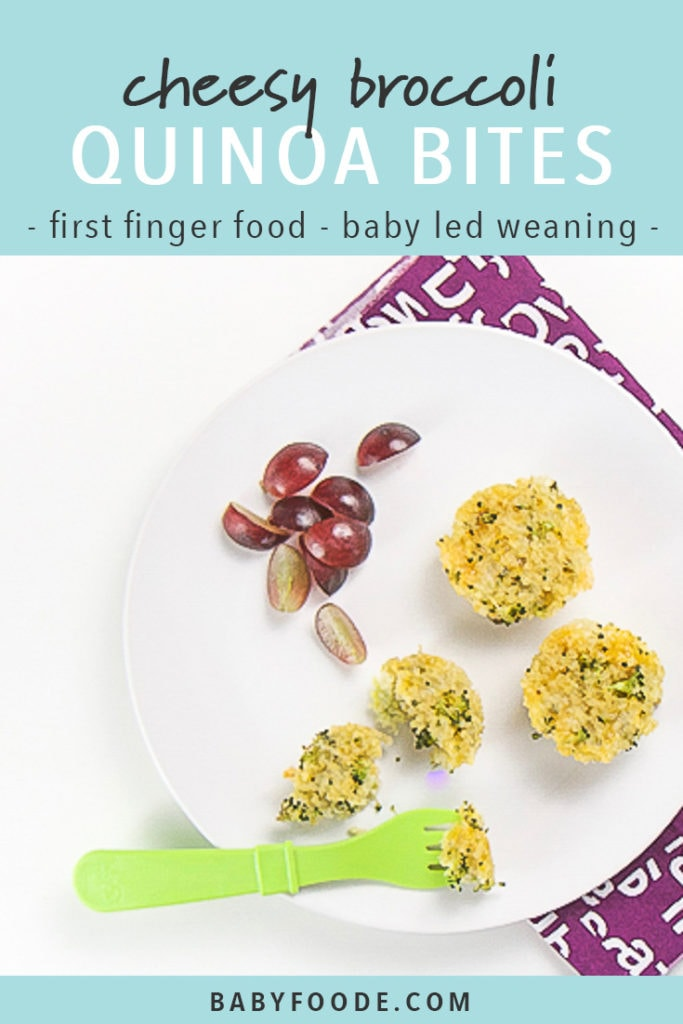 Pinterest image for cheesy broccoli quinoa bites - a quick and easy recipe for baby led weaning.