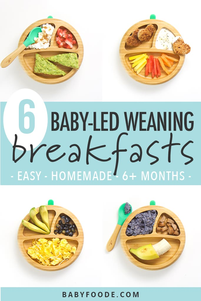 6 Baby Led Weaning Breakfast Ideas Easy To Make Baby Foode A cup of fresh cantaloupe has about 60 calories which come primarily from carbohydrates. 6 baby led weaning breakfast ideas