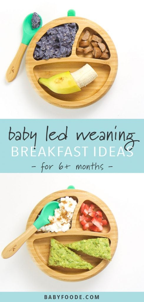 Two baby led weaning breakfast plates for ages 6+ months.