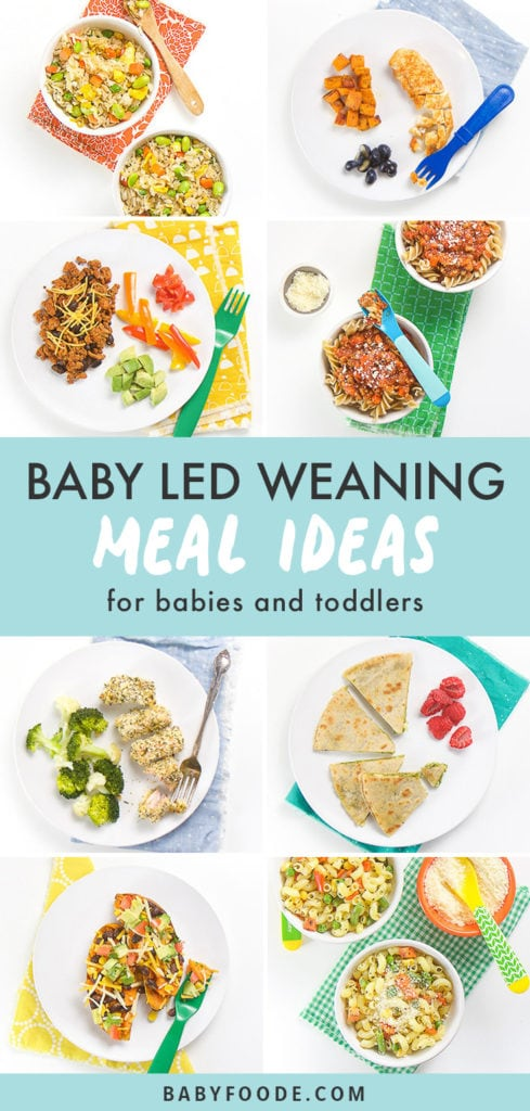 Pinterest image for baby led weaning meal ideas.