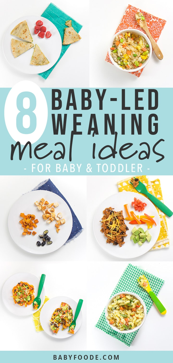 graphic for post - text reads 8 baby-led weaning meal ideas for baby & toddler. There are 6 square pictures showing off some of delicious meals.