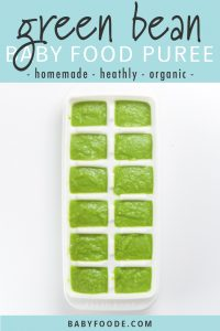 graphic for post- text reads - green bean baby food puree - homemade- healthy - organic. Image is of a white freezer tray sitting on a white background filled with a creamy green organic green bean baby food recipe