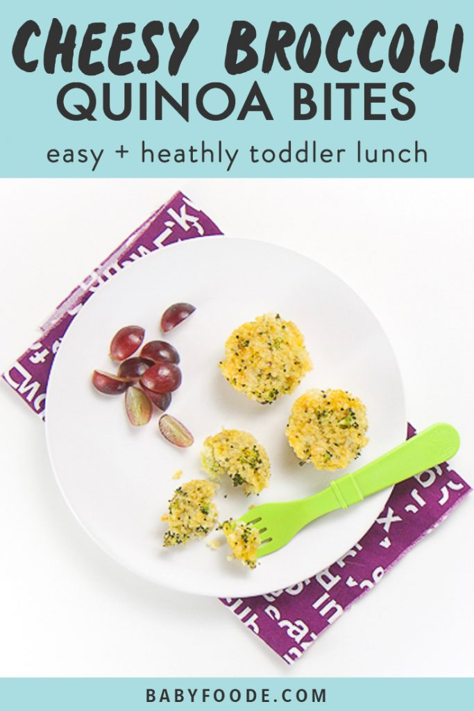 Graphic for post - text reads Cheesy Broccoli Quinoa Bites - easy + healthy toddler lunch. Image is of white plate sitting on top of a purple napkin on a white surface. On the plate is 3 mini cheesy broccoli quinoa bites and a small handful of sliced grapes. One of the quinoa bites is halfway eaten with a fork.