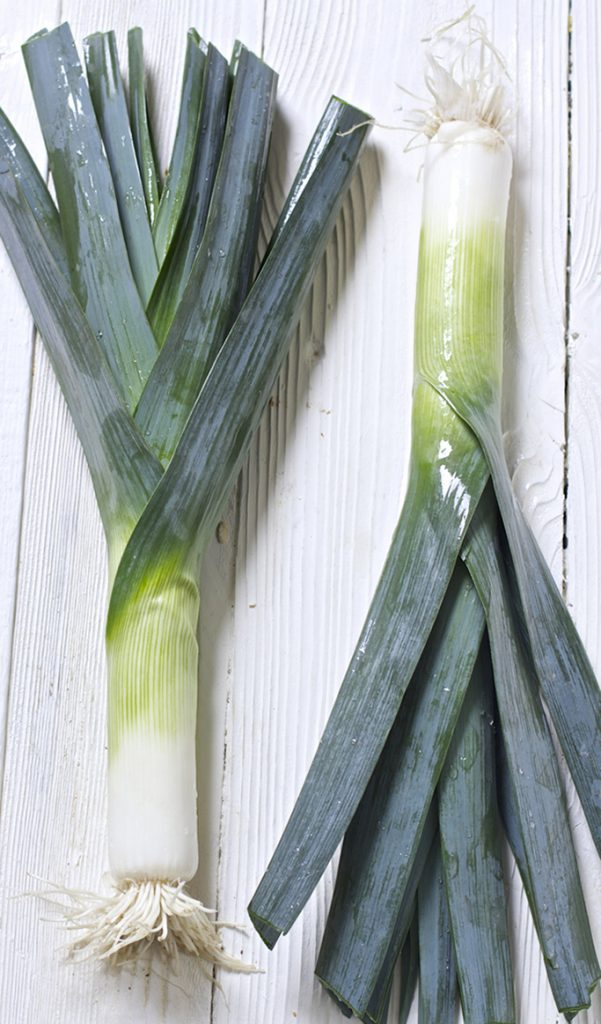 2 large leeks laying flat on a white wooden surface.