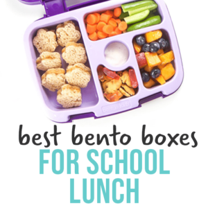 The best bento boxes for school lunch for kids - great options at all price points.