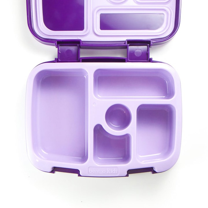Purple bento school lunch box.