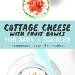 Graphic for post - cottage cheese with fruit bowls for baby + toddler - homemade - easy - 9+ months with images of 3 bowls filled with the cottage cheese for baby.