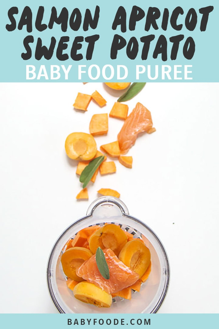 Graphic for Post - Salmon Apricot sweet Potato Baby Food Puree, with images of produce scattered outside of blender on white background.