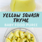 Graphic for Post- Yellow Squash Thyme Baby Food Puree. Image is of a Small clear jar filled with homemade squash thyme baby food puree as well as a Cooked produce in a steamer basket.