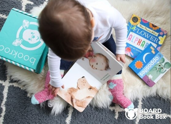 Baby Reading board books.