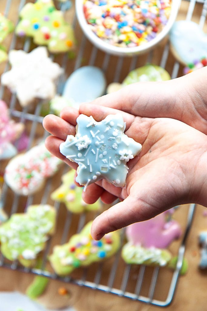 Hands holding a healthy snowflake cookie.