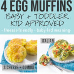 Graphic for Posts - 4 egg muffins, baby, toddler and kid approved - freezer friendly and baby led weaning. Images are of grid of egg muffins.