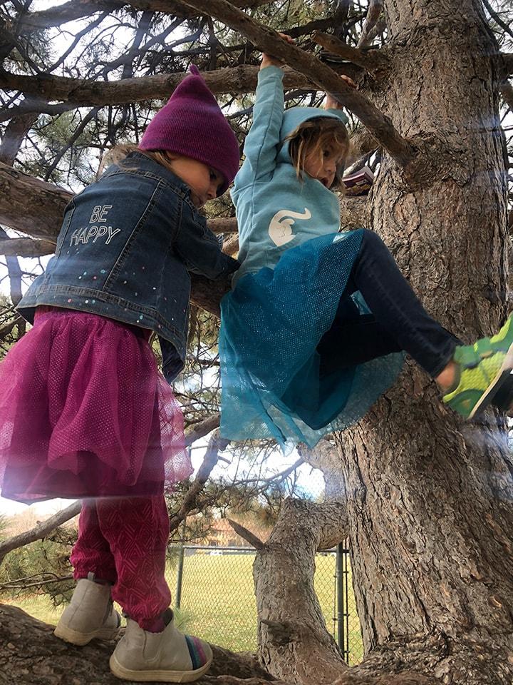 kids climbing a tree.