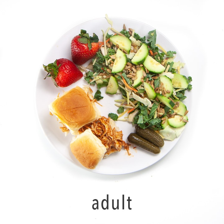 adult plate - shows how to serve one meal to the entire family.