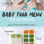 Graphic for Post - Baby Food Menu - 6-9 Months, plus free printable menu. Image is of freezer trays filled with baby food purees.