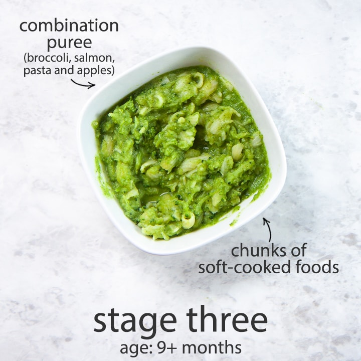 Stage three baby food combination puree for 9 months and up.