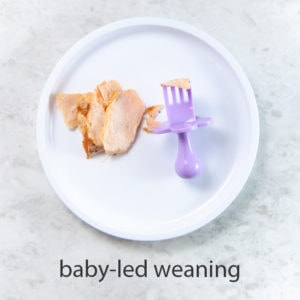 flakes of salmon on a plate with a fork for baby led weaning