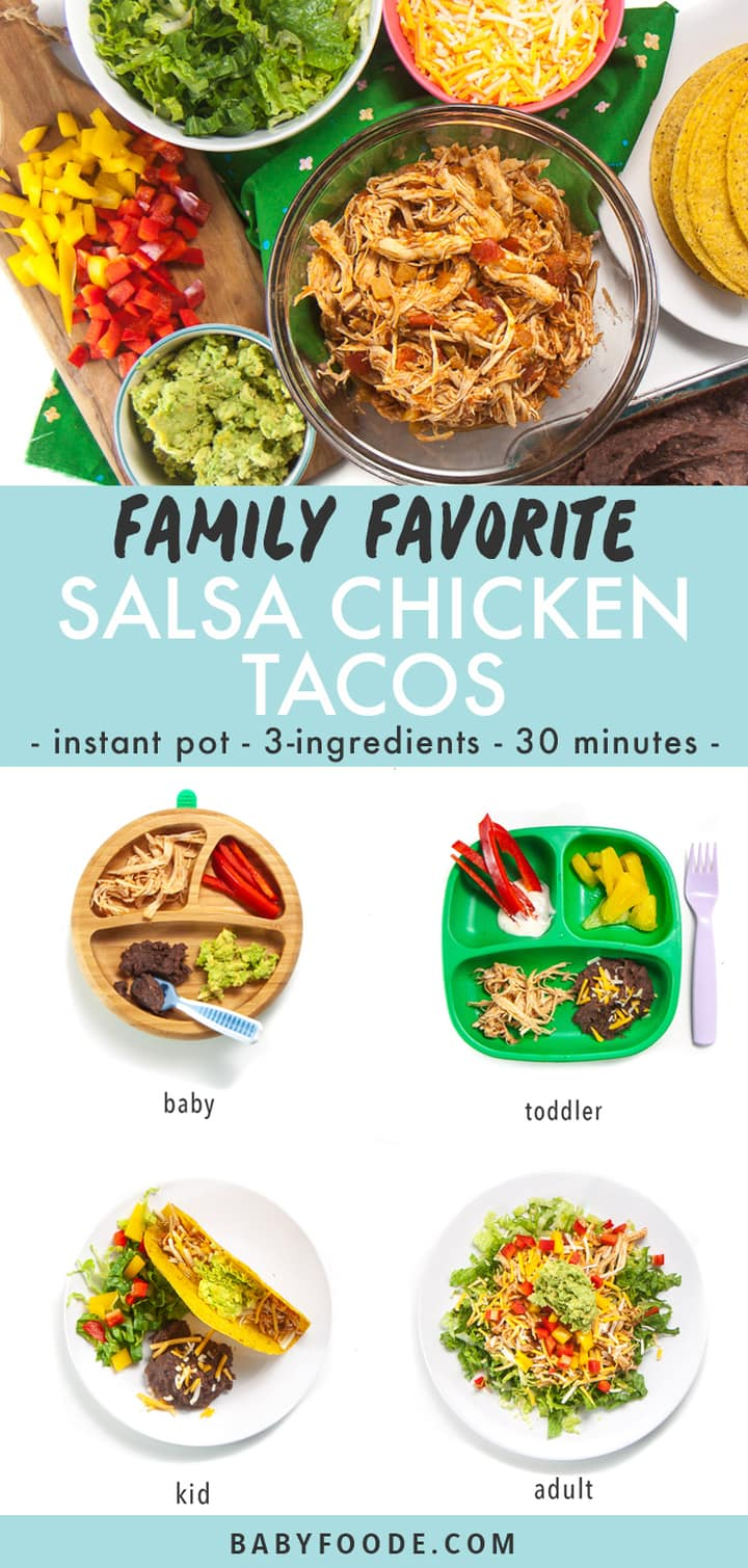 Graphic for post- family favorite salsa chicken tacos - instant pot - 3 ingredients - 30 minutes with images of a spread of tacos for dinner and each families members plate - baby, toddler, kid and adult.