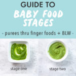 Graphic for post - Guide to Baby Food Stages - purees thru finger foods with baby led weaning. Images are a grid of bowls full of the different stages.