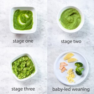 grid of images showing the different baby food stages.