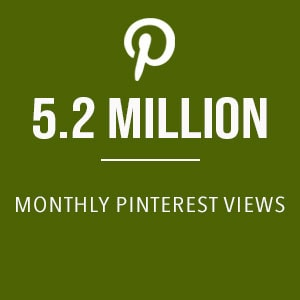 monthly Pinterest views for Babyfoode.