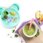 one meal for baby - baby food puree or baby-led weaning.
