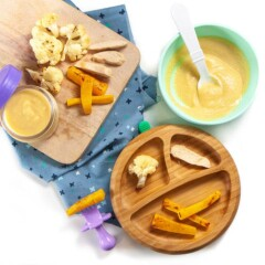 spread of meal for baby - purees or finger foods for baby-led weaning.